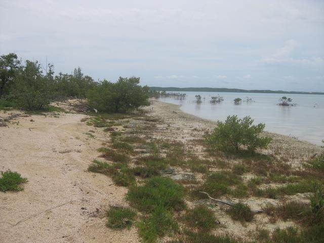 4. Land for Sale at McKanns, Long Island, Bahamas
