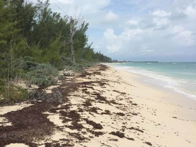 2. Land for Sale at Green Turtle Cay, Abaco, Bahamas
