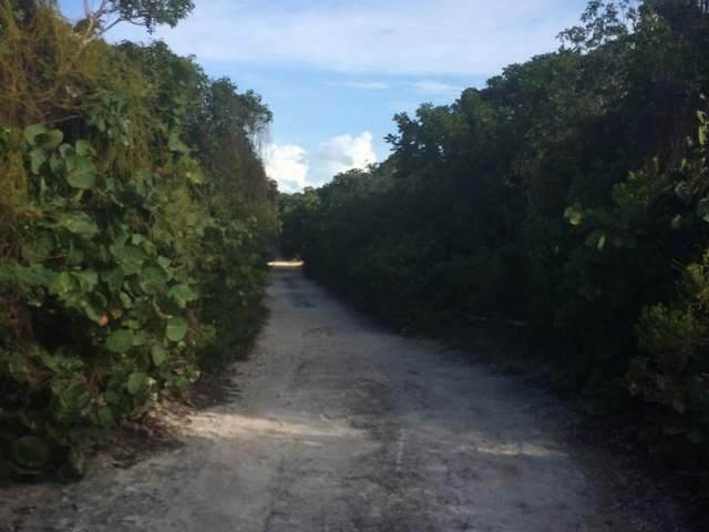 4. Land for Sale at Green Turtle Cay, Abaco, Bahamas