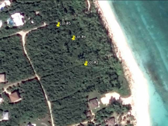 5. Land for Sale at Green Turtle Cay, Abaco, Bahamas