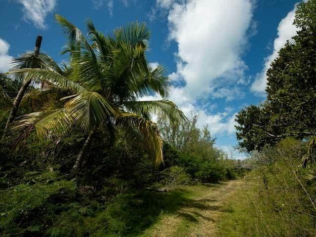 39. Land for Sale at Elbow Cay Hope Town, Abaco, Bahamas