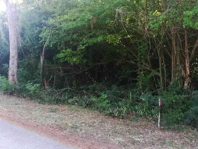 5. Land for Sale at Lot #19 Hillview Dr. Winton Estates, Winton, Nassau And Paradise Island Bahamas