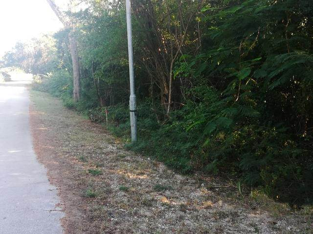 6. Land for Sale at Lot #19 Hillview Dr. Winton Estates, Winton, Nassau And Paradise Island Bahamas