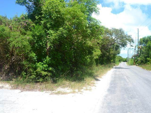 4. Land for Sale at Lot 37 Russell Island, Eleuthera, Bahamas