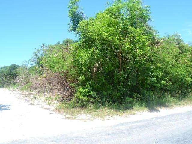 5. Land for Sale at Lot 37 Russell Island, Eleuthera, Bahamas