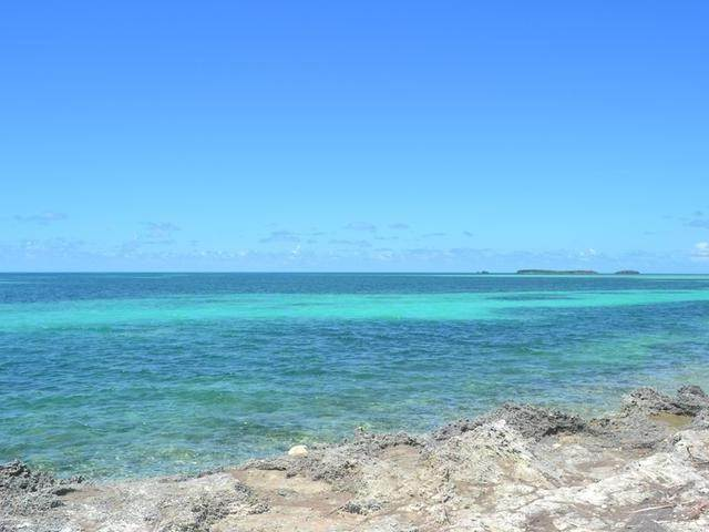 9. Land for Sale at Lot 37 Russell Island, Eleuthera, Bahamas