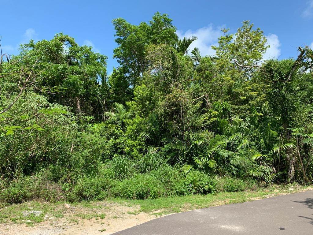 4. Land for Sale at Lyford Cay, Nassau And Paradise Island, Bahamas