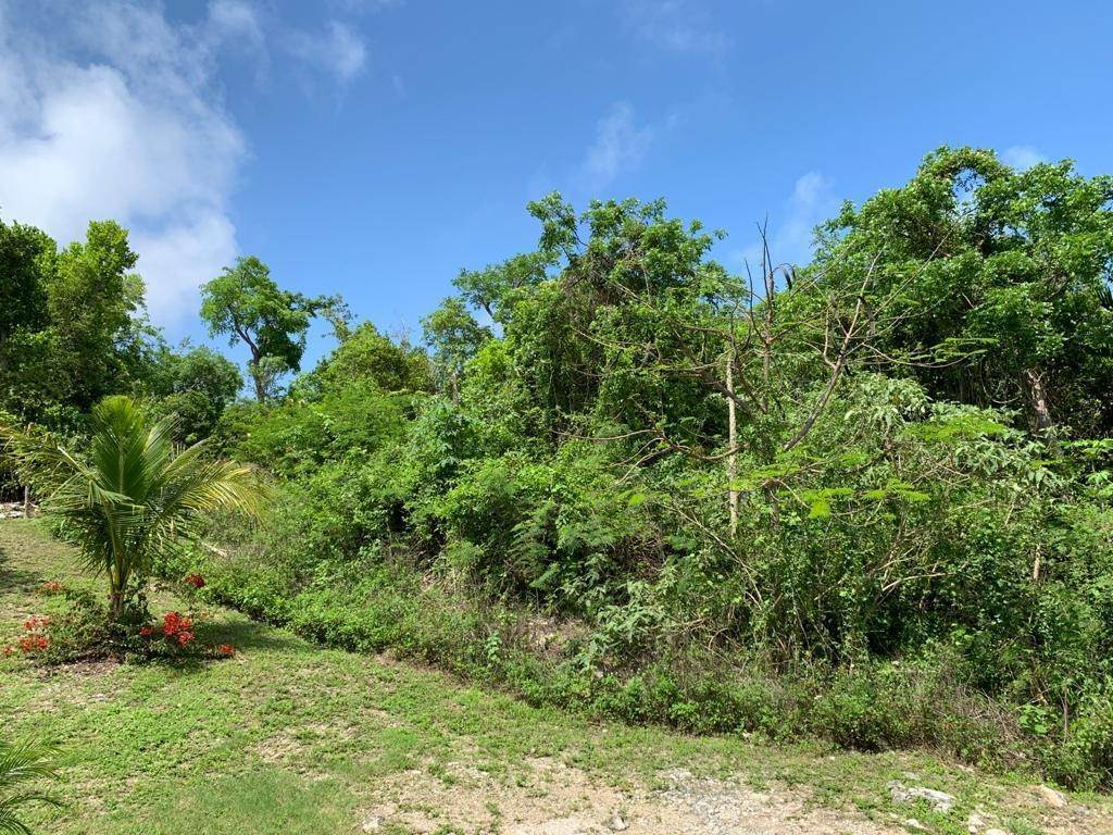 5. Land for Sale at Lyford Cay, Nassau And Paradise Island, Bahamas