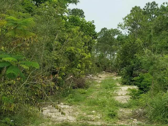 2. Land for Sale at Bacardi Road, Nassau And Paradise Island, Bahamas