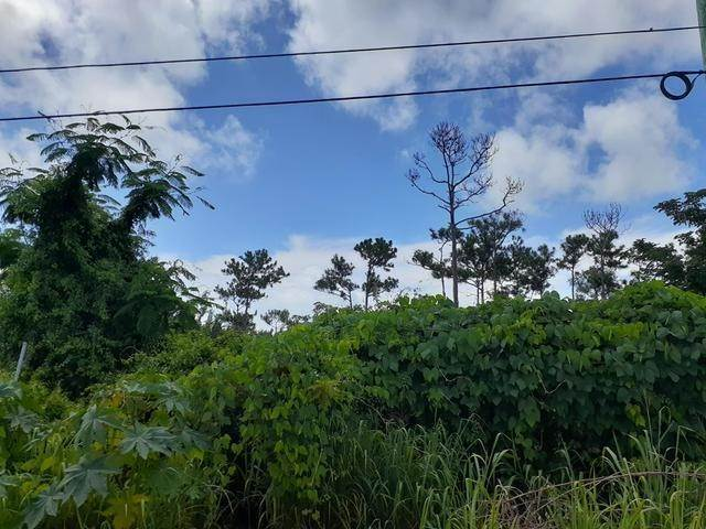 8. Land for Sale at Sea Breeze, Nassau And Paradise Island, Bahamas