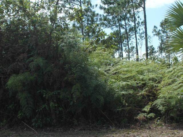 3. Land for Sale at Holmes Rock, Freeport and Grand Bahama, Bahamas