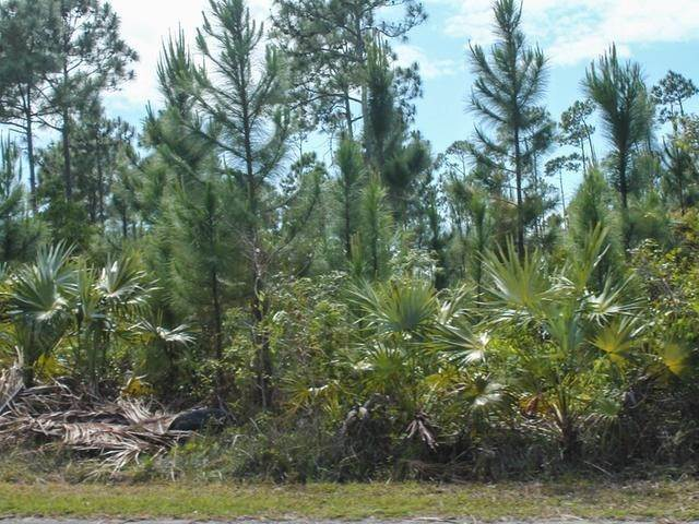 4. Land for Sale at Holmes Rock, Freeport and Grand Bahama, Bahamas