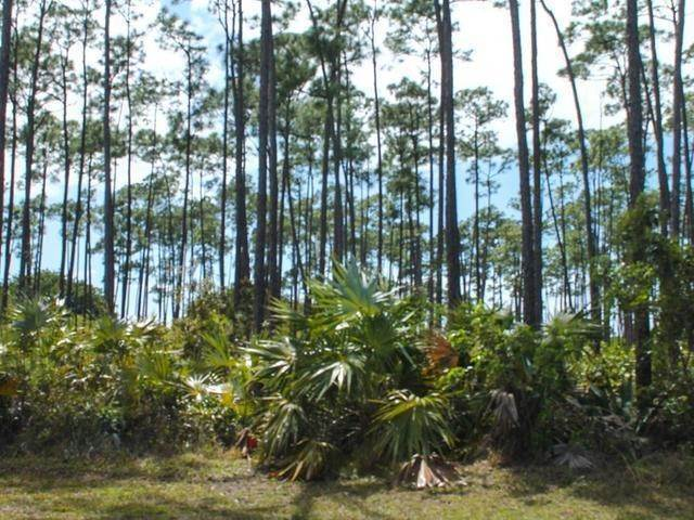 5. Land for Sale at Holmes Rock, Freeport and Grand Bahama, Bahamas
