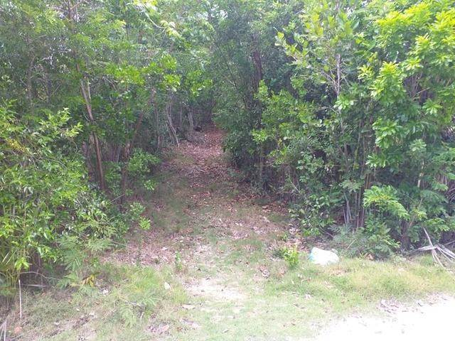 Terreno por un Venta en Ten Bay Beach, Savannah Sound, Eleuthera Bahamas