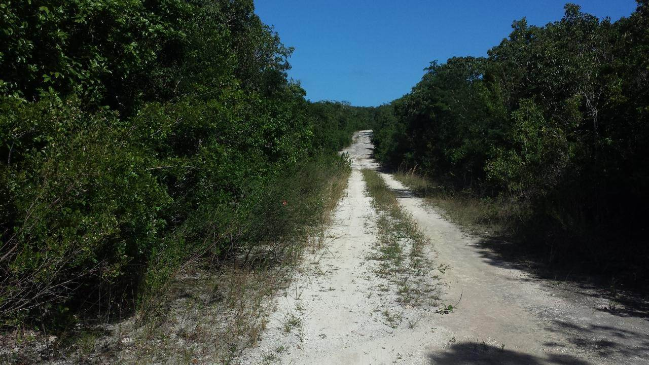 3. Land for Sale at Arthurs Town, Cat Island, Bahamas