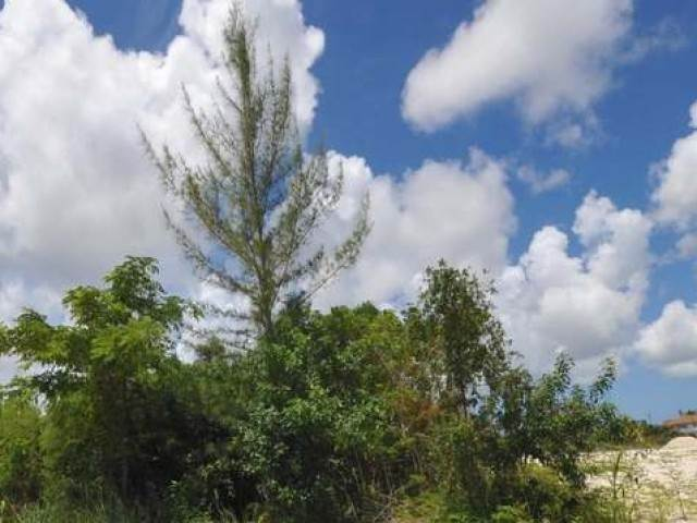 6. Land for Sale at Coral Lakes, Coral Harbour, Nassau And Paradise Island Bahamas