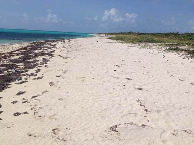 11. Land for Sale at Acklins, Bahamas