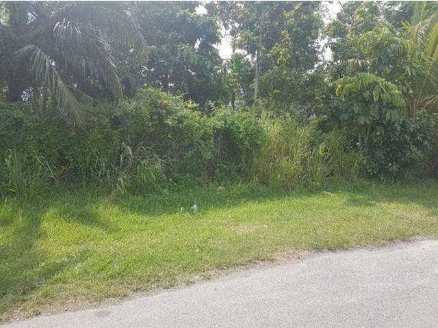 2. Land for Sale at Prince Charles Drive, Nassau And Paradise Island, Bahamas