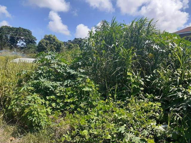 Land for Sale at Boyd Subdivision, Nassau And Paradise Island, Bahamas