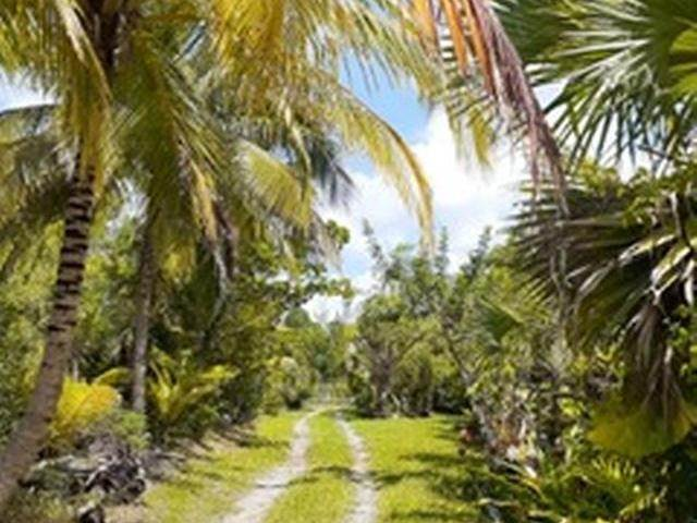 3. Land for Sale at Governors Harbour, Eleuthera, Bahamas