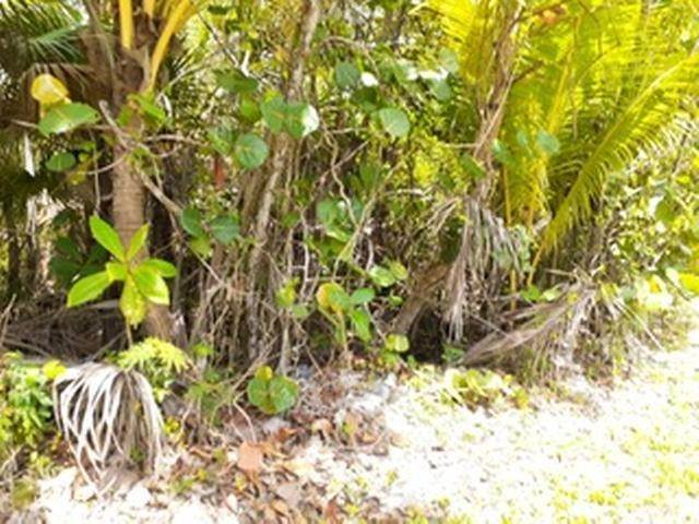 8. Land for Sale at Governors Harbour, Eleuthera, Bahamas