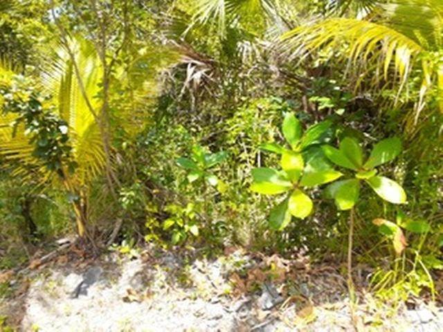9. Land for Sale at Governors Harbour, Eleuthera, Bahamas