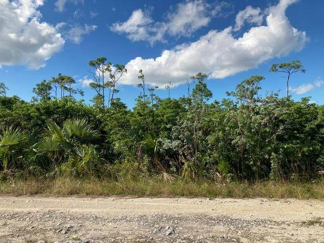 Land for Sale at Arden Forest Lot Arden Forest, Freeport And Grand Bahama, Bahamas