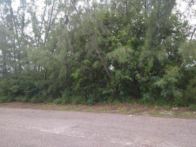 Land for Sale at Cowpen Road, Nassau And Paradise Island, Bahamas