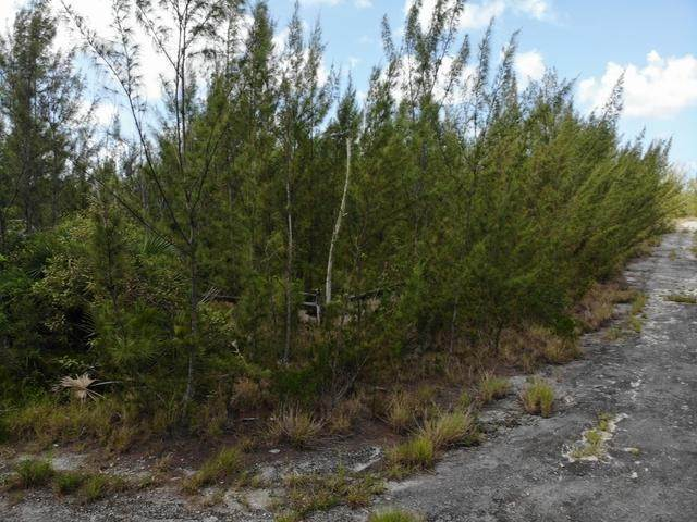 14. Land for Sale at Freehold Airport Industrial Park, Nassau And Paradise Island, Bahamas