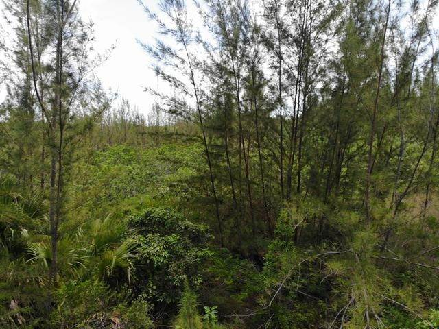 16. Land for Sale at Freehold Airport Industrial Park, Nassau And Paradise Island, Bahamas