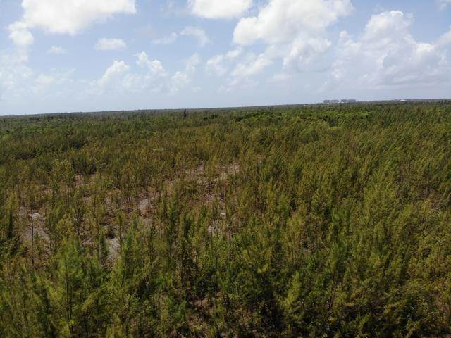 17. Land for Sale at Freehold Airport Industrial Park, Nassau And Paradise Island, Bahamas