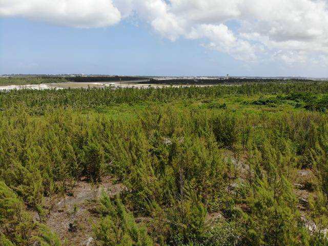 23. Land for Sale at Freehold Airport Industrial Park, Nassau And Paradise Island, Bahamas