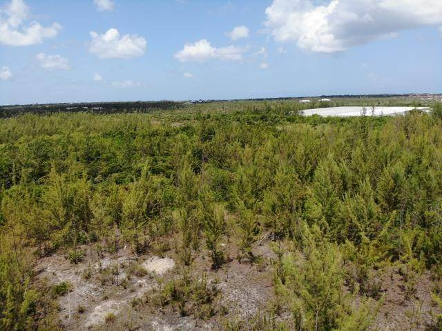 24. Land for Sale at Freehold Airport Industrial Park, Nassau And Paradise Island, Bahamas