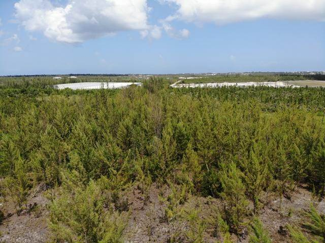 26. Land for Sale at Freehold Airport Industrial Park, Nassau And Paradise Island, Bahamas