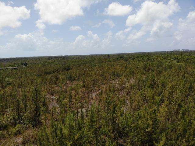 28. Land for Sale at Freehold Airport Industrial Park, Nassau And Paradise Island, Bahamas