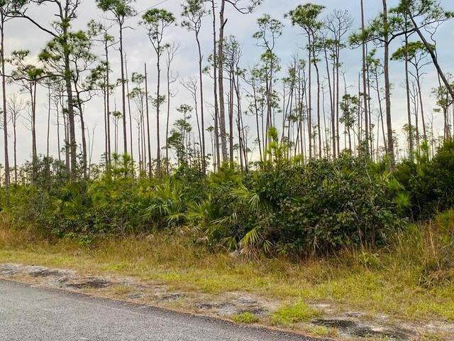 Land for Sale at L19 B8 Shannon Sub Bahamas
