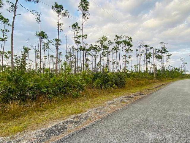 2. Land for Sale at L19 B8 Shannon Sub Bahamas