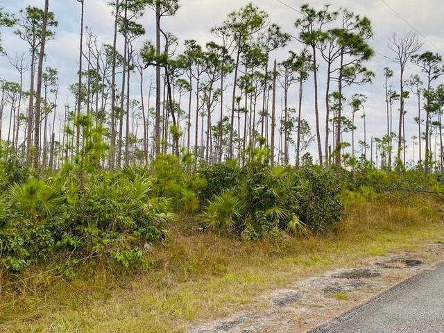 3. Land for Sale at L19 B8 Shannon Sub Bahamas