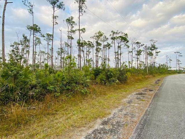 5. Land for Sale at L19 B8 Shannon Sub Bahamas