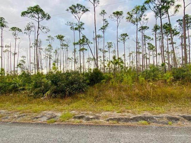 7. Land for Sale at L19 B8 Shannon Sub Bahamas
