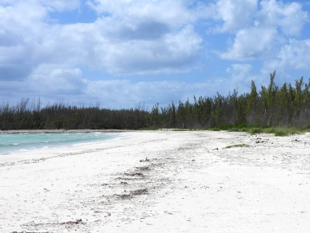 6. Land for Sale at High Rock, Freeport and Grand Bahama, Bahamas