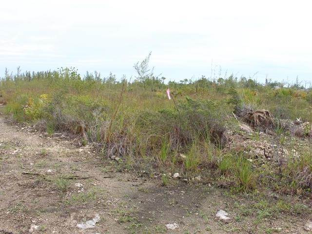 2. Land for Sale at Cowpen Road, Nassau And Paradise Island, Bahamas