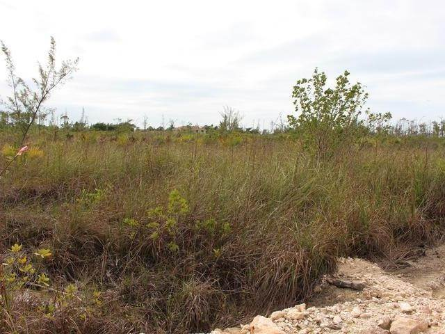 3. Land for Sale at Cowpen Road, Nassau And Paradise Island, Bahamas