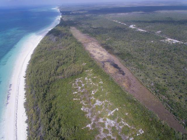 3. Land for Sale at High Rock, Freeport and Grand Bahama, Bahamas