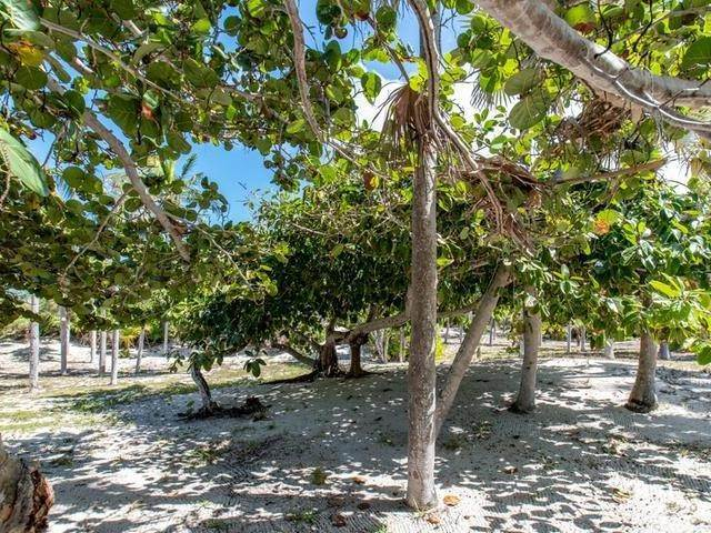 46. Single Family Homes por un Venta en Double Bay, Eleuthera, Bahamas