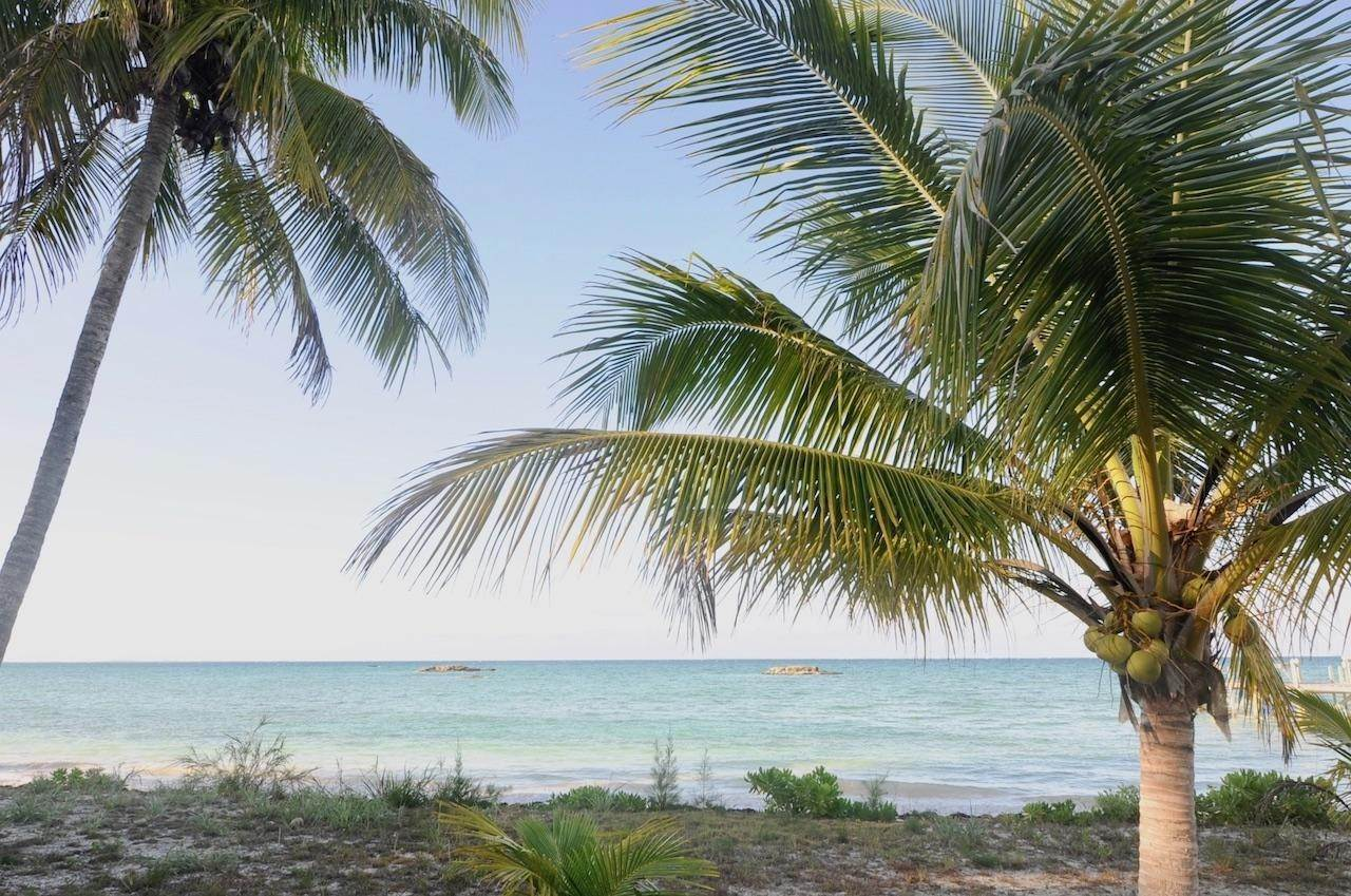 5. Land for Sale at Turtle Rocks Orchard Turtle Rocks, Abaco, Bahamas
