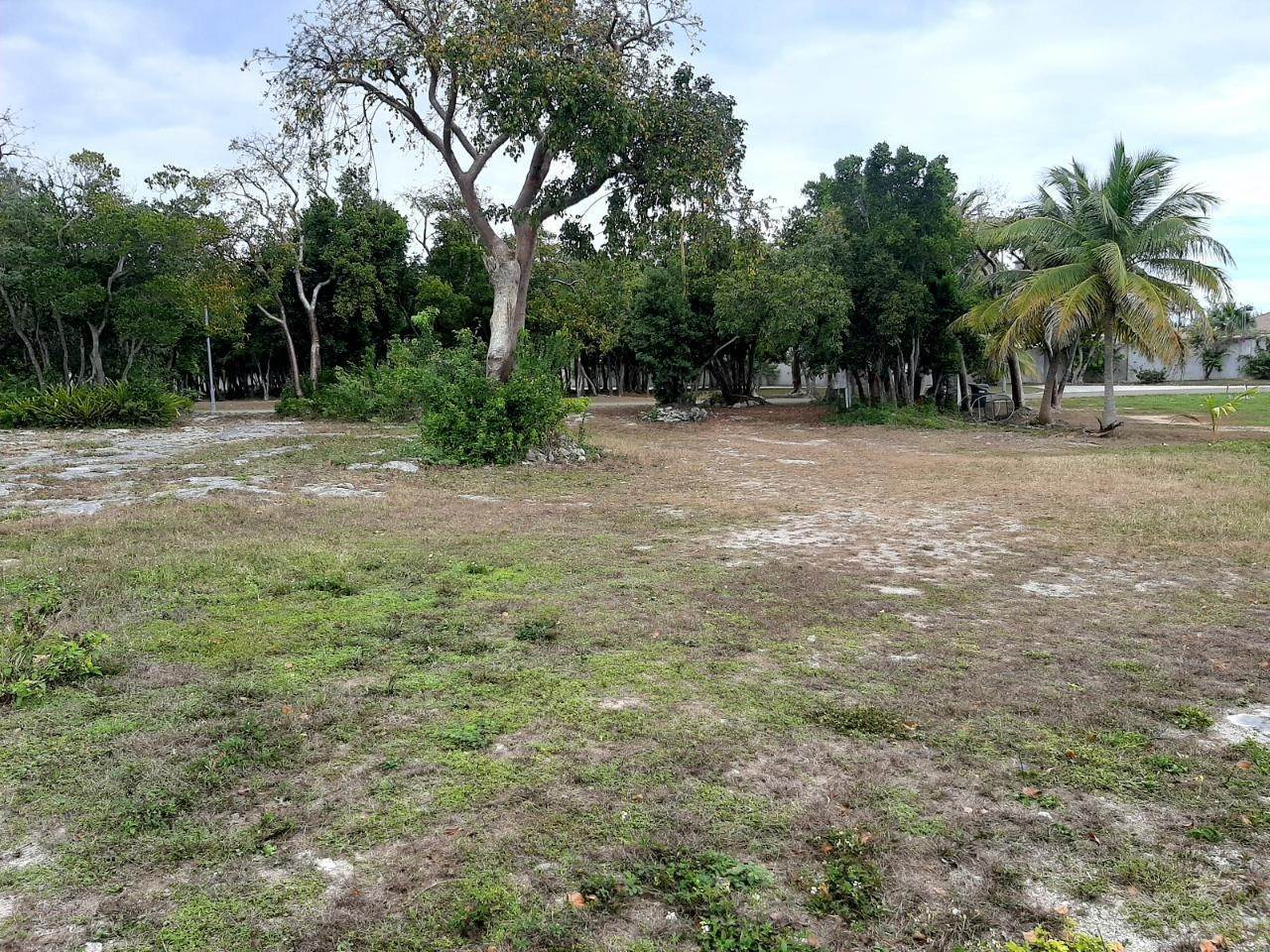 4. Land for Sale at Canalfront Lot - PNP Port New Providence, Yamacraw, Nassau And Paradise Island Bahamas