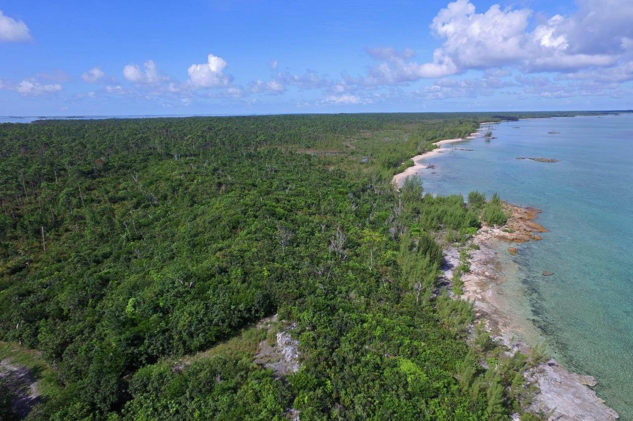 12. Land for Sale at Abaco, Bahamas