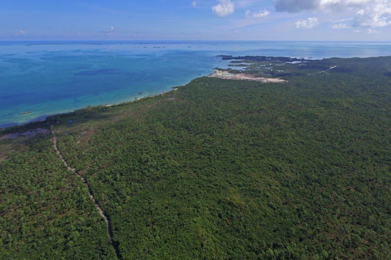 14. Land for Sale at Abaco, Bahamas