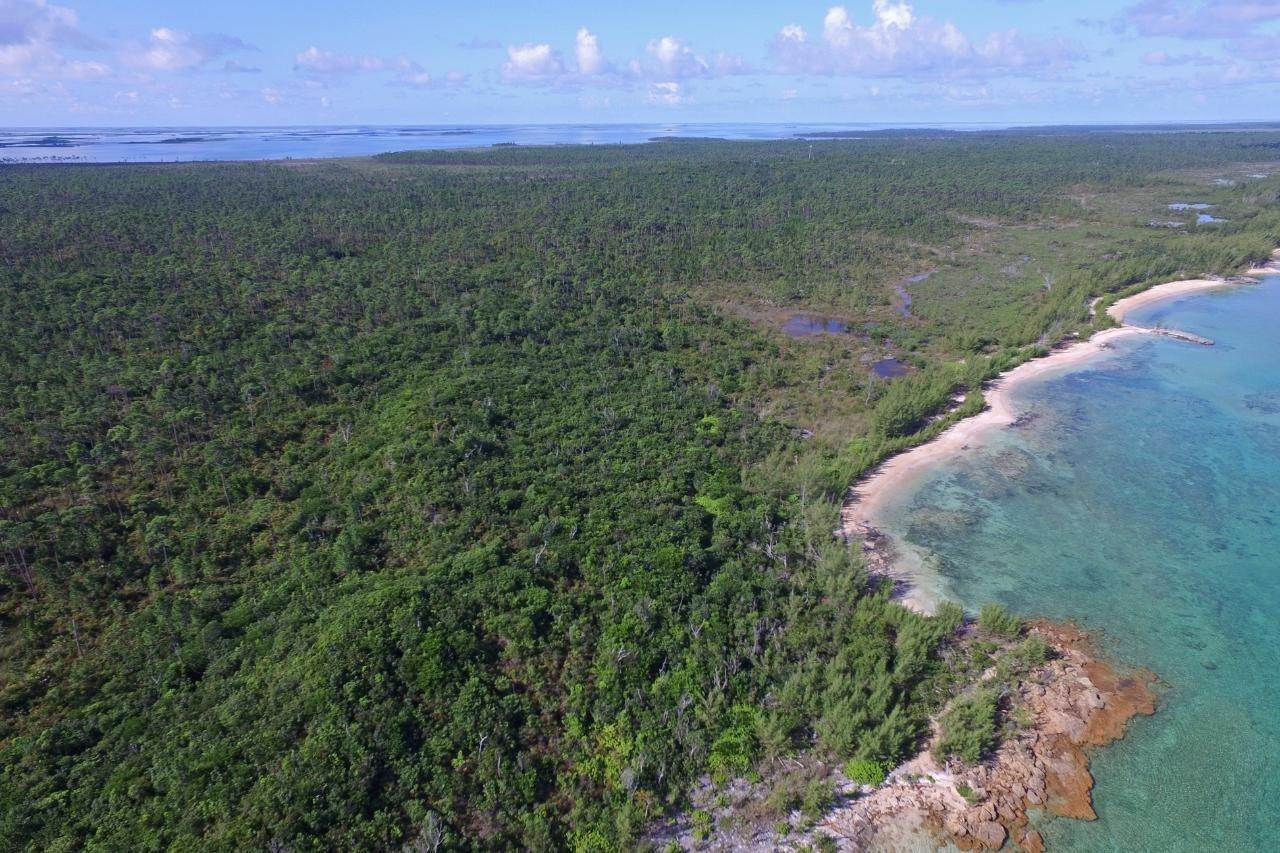 4. Land for Sale at Abaco, Bahamas